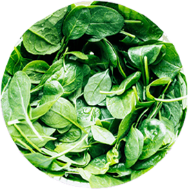Image of Vitamin B9 (folic acid)